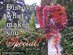 discover what makes you special